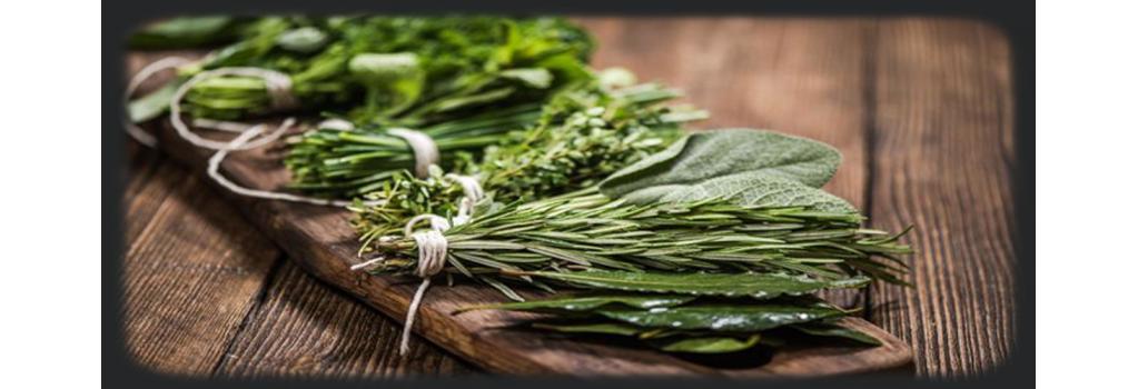 Spicy Deli, nos herbes et aromates.