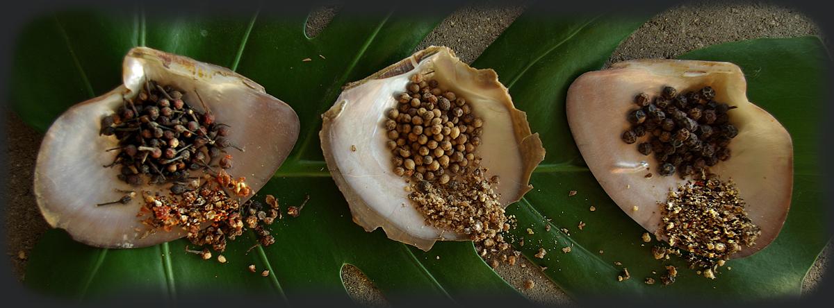 Les poivres de Madagascar
